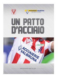 ACCIAIERIE VALBRUNA- VICENZA CALCIO